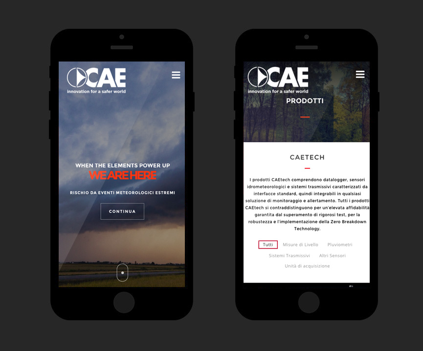 Website CAE